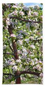 Beautiful Blossoms - Digital Art Beach Towel by Carol Groenen
