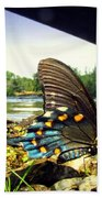 Beautiful Butterfly At The River II Beach Towel