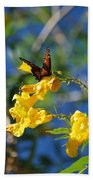 Beautiful Butterfly Beach Towel