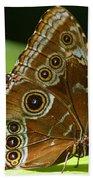 Beautiful Butterfly Wings Of Meadow Brown Beach Towel