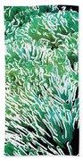 Beautiful Coral Reef 2 Beach Sheet