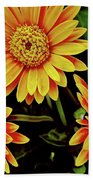 Beautiful Daisies Beach Towel