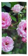 Beautiful Delicate Pink Roses On Green Leaves Background. Beach Towel
