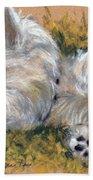 Beautiful Dreamer Beach Towel