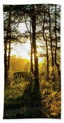 Beautiful Forest At Sunrise Beach Towel