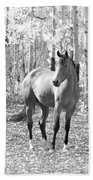 Beautiful Horse In Black And White Beach Towel