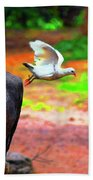 Beautiful Moment With A Bird Take Off , Wall Frame, Art Beach Towel