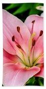 Beautiful Pink Lily Beach Towel