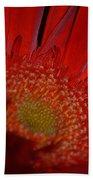 Beautiful Red Beach Towel