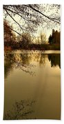 Beautiful Reflection In The Evening Hours Beach Towel