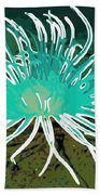 Beautiful Sea Anemone 2 Beach Towel by Lanjee Chee