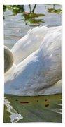 Beautiful Swan Beach Towel