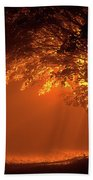 Beautiful Trees At Night With Orange Light Beach Towel