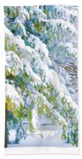Beautiful Trees Covered With Snow In Winter Park Beach Towel