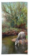Beautiful White Horse And Enchanting Spring Beach Towel