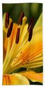 Beautiful Yellow Lily Beach Towel