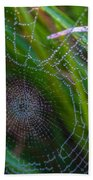 Beauty And Intricacy Beach Towel