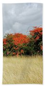 Beauty Of Bougainvillea Beach Towel