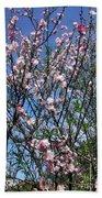 Beautiful Spring. Blooming Tree 2 Beach Towel