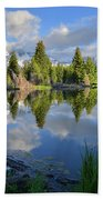 Beaver Dam Reflection In Grand Teton Np Beach Sheet