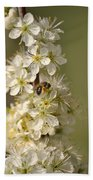 Bee And Blossoms Beach Towel