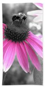 Bee And Cone Flower Beach Towel