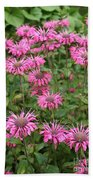 Bee Balm Beauties Beach Towel