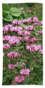 Bee Balm Garden Beach Towel