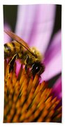 Bee Feasting Beach Towel
