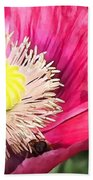 Bee In A Flower Beach Towel