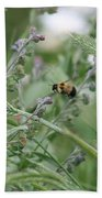 Bee In Flight Beach Towel