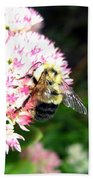 Bee-line 2 Beach Towel