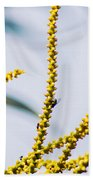 Bee On A Branch I Beach Towel