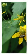 Bee On A Flower Beach Towel