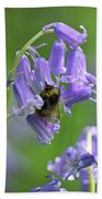 Bee On Bluebell Beach Towel