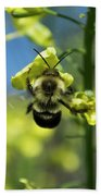 Bee On Broccoli Flower Beach Sheet