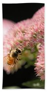 Bee On Flower 3 Beach Towel