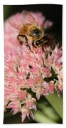 Bee On Flower 4 Beach Towel