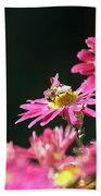 Bee On Flower Spring Scene Beach Towel