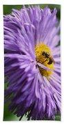 Bee On Purple Daisy Beach Towel
