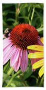 Bee On The Cone Flower Beach Towel