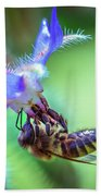 Bee On The Flower Beach Towel