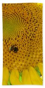 Bees Share A Sunflower Beach Towel