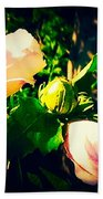 Beetle Hanging Out With Hibiscus Flowers Beach Towel