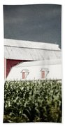 Before The Storm Beach Towel by Lisa Russo