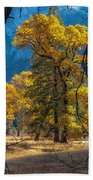 Behind The Branches Beach Towel