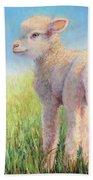 Behold The Lamb Beach Sheet