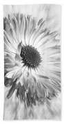 Bellis In Mono  #flower #flowers Beach Towel