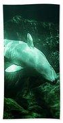 Beluga Whale 5 Beach Sheet