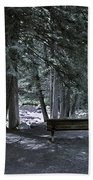 Bench By The Stream II Beach Towel